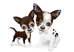 910011 (Osoq.com) Tags: wwwosoqcom pet animal caricature