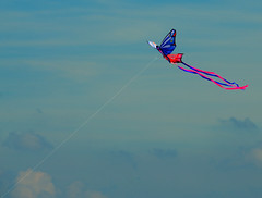 High as a kite. (alex.vangroningen) Tags: red purple pink white blue sky clouds outdoors kite tail thenetherlands nikon18200mm nikond7000 colors line
