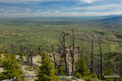 Above Cody (kevin-palmer) Tags: heartmountain cody wyoming absarokamountains june spring summer nikond750 afternoon tamron2470mmf28 scenic view vista sunny blue sky clouds
