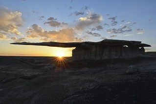 The King of Wings in the Bisti Wildness, New Mexico