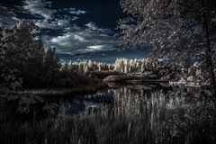 030 (petrisalonen) Tags: infrared infraredphotography infraredphoto irphotography ir720 nature naturephotography lagoon landscape swamp imatra finland 240