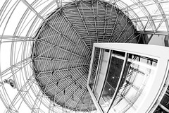 Gridlock (Karen_Chappell) Tags: architecture fisheye canonef815mmf4lfisheyeusm wideangle mun memorialuniversity university bw blackandwhite stjohns canada atlanticcanada building ceiling glass steel grid geometry geometric abstract circle lines