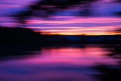 Lucid Obscurity (haddartist) Tags: water waterside coast coastal shore shoreline pond lake calm still glassy reflection reflecting tree trees branch branches forest woods nature houses neighborhood sky clouds sunset dusk evening color colorful vibrant vibrance intense pink purple orange blur slowshutter pan panning motion artsy artistic virginiabeach virginia