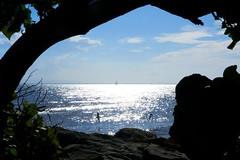yacht and gulls (Leonard J Matthews) Tags: seaside water bay moretonbay queensland australia redcliffepeninsula mythoto yacht birds gulls tree frame sky clouds