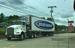 KW, Budwiser, Belle Vernon, PA. 5-24-2017 (jackdk) Tags: truck tractor tractortrailer semi semitruck seeandhear kw kenworth kwopper bud budwiser beertruck sheetz