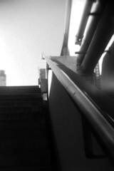 03_30 (maruebe) Tags: recesky ilfordfp4plus125kleinbildsw1251002selbstabgepackt ilfordfp4plus 17mfilm selbstabgepackt kleinbildfilm kleinbild schnellscan schnellscans gescannt scan scanner scanned rollei rolleidfs100se schwarzweis schwarzweiss sw blackandwhite bw monochrom monochrome analog analogue film analogerfilm analoguefilm abgelaufenerfilm abgelaufen expiredfilm expired lomo lomographie lomografie lomography lomographics hochformat f17m germany deutschland marionüberschaer marionueberschaer cmarionüberschaer cmarionueberschaer maruebe bochum universitätbochum unibochum ruhruniversitätbochum treppe stairs