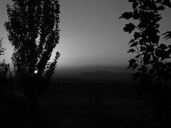 _IMP9726-11 Luces y sombras... (Eloycarranz21) Tags: light monocrome sky