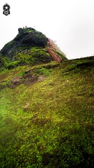 #Sondai #Fort Pinnacle (The.Creativity.Engine) Tags: mountain green sky fog trek trekking fun awesome beautiful blue india matheran maharashtra rain rainyday water photooftheday picoftheday cloudy cold outdoor nature naturescenes naturelovers instanaturelover