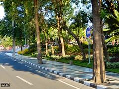 DSCN5862 (Detta Priyandika) Tags: street jalan raya scape urban city surabaya indonesia endonezya basra suroboyo skyscrapers sidewalk skyscraper sunset