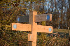 Which Way? (Worthing Wanderer) Tags: eastsussex ditchling ditchlingbeacon southdowns southdownsway sunrise sunny winter walk frosty january