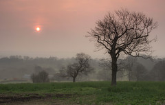 Chesterfield Sunrise (Julian Barker) Tags: chesterfield derbyshire sunrise sun orb dawn tree trees field hill opportunity julian barker canon dslr 600