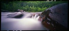 Summer Colors on the Narrows (DRCPhoto) Tags: zeroimage612b pinhole lenslessphotography fuji nph400 cheatriver westvirginia