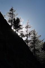 FLD_2136m (MILESI FEDERICO) Tags: milesifederico milesi montagna italia italy iamnikon inmontagna piemonte piedmont alpi alpicozie altavallesusa altavaldisusa nikon nikond7100 nital natura nature nat d7100 dettagli details 2017 europa europe estate summer visitpiedmont valsusa valliolimpiche valdisusa valledisusa wild landscape paesaggio panorama