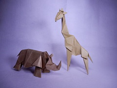 Giraffe and Rhinoceros (ayako kobayashi) Tags: origami giraffe hideokomatsu rhinoceros
