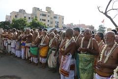 IMG_4901 (Balaji Photography - 3,800,000 Views and Growing) Tags: chennai triplicane lord carfestival utsavan temple colours hindu india emotion worship go community