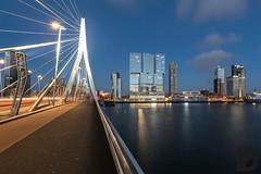 """Showdown"" by preciousdecay.com #night #rotterdam #bridge #skyline #erasmusbrug (Brrr Urbex - www.preciousdecay.com) Tags: night rotterdam bridge skyline erasmusbrug"