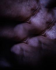 170709-gross.jpg (r.nial.bradshaw) Tags: vivitarseries1ultimatefilterkit 3imagefilter dailyphotographer horror creepy eerie strange wierd 50mm14g eyewideopen fastglass geldednikon primeking50mm primelens nikon d5 nikonsuperflag attributionlicense creativecommons image photo probono probonopublico rnialbradshaw royaltyfree stockphoto stockphotography gross disgusting disturbing meat muscle