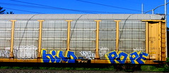hilo - pope (timetomakethepasta) Tags: hilo pope sts mta freight train graffiti art autorack benching selkirk new york photography