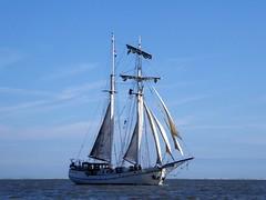 Koh-i-noor, her majesty (Alta alatis patent) Tags: kohinoor galjas sailing charter tallship waddensea majesty