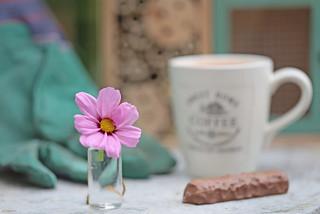 Coffee break :-)