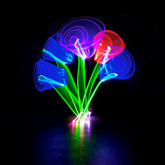 week26-2 (Fun@365) Tags: dogwood52 dogwood2017 dogwoodweek26 lightpainting light rps fun colour neon