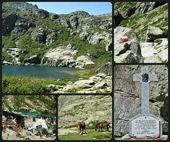 Corse    (23.06.07) (France-♥) Tags: corse corsica hautecorse collage france ile lac chevaux bergerie gr20 chemin croix cross lacdemelu lacdemelo valléedelarestonica gorgesdelarestonica îledebeauté