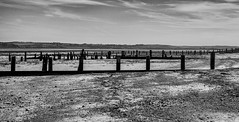 GROYNES ON THE BEACH (coffee robbie..PROTECTED BY PIXSY) Tags: groynes beach blackandwhite bw outdoor landscape nikond5100 nikon