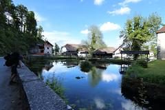 2017-05-12 17-10-37 - IMG_8799n (rudolf.brinkmoeller) Tags: wandern slowenien landschaft natur bistra karst