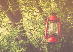 You Should be Here... (Fire Fighter's Wife {off for awhile}) Tags: wedding holiday 4thofjuly lantern death remembrance friends family matte olympus 1250mm micro microfourthirds mft weekend sunday hss happyslidersunday inspired inspiredbysong inspiredbymusic dedication vintage vintagestilllife vintagefeelings vintageprocessing retroprocessing 1250mmf3563