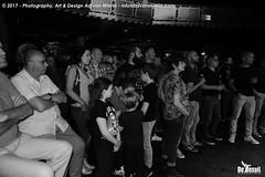 2017 Bosuil-Het publiek bij The Road Home en The Brandos 1-ZW