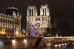 nd IMG_4790 (jp-03) Tags: paris parigi notre dame cathédrale jp03