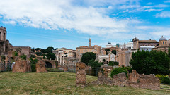 Roman Forum ruins / Roman Forum Ruinen