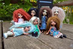 Maddy and her sisters (ladymadrigal80) Tags: pukifee pukifeemio pukifeeluna pukifeeicis pukifeecrystal pukifeebonnie mio luna crystal icis bonnie fairyland bjd