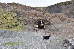 2017-05-17 Nenthead Mines 07 (John Carter 1962) Tags: narrowgauge industrialrailway