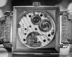 Leberblümchen / bottom / HMM (Vintage lens lover (slowly catching up)) Tags: zuiko60mm28 dof schärfeverlauf bokeh glashütte uhr watch bottom hmm macro montag macromondays makroaufnahme