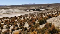 unendliche Weite (marionkaminski) Tags: bolivien bolivia südamerika southamerica altiplano anden losandes hochebene landscape paisaje panasonic lumix fz1000