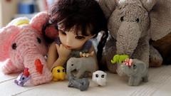 E is for Elephants (cheesemoopsie) Tags: scout doll elephant littlefee ante fairyland squinkies toy