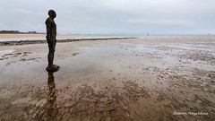 Another Place, Crosby (Sharon Hazeldine) Tags: another place anthony gormley crosby canon 1018mm 7d mkii