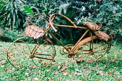 Vintage bike, Singapore (Tatyana Kildisheva) Tags: asia singapore singapura southeastasia adampark blackandwhite colonial colonialheritage conservationhome house азия сингапур юговосточнаяазия dsc4174 bike bicycle antique vintage