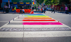 2017.06.09 DCRainbowCrosswalks, Washington, DC USA 6198