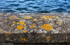 Dam Wall (PRPhoto dot Wales) Tags: 2017 july llysyfran pembrokeshire wales cloudy dam landscape prphotowales reservoir travel water freshwater nothdr canon artphotography abstract wall lichen orange stone minimal