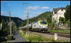 193 893 - Stadt Wehlen (Bastian Weber) Tags: vectron captrain itl elbtal elbtalbahn stadt wehlen siemens eisenbahn
