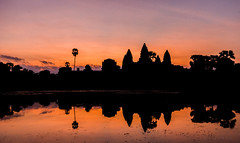 classic angkor, cambodia (Tina Grdić) Tags: angkor wat cambodia sunrise lake towers palm colors sonyalpha7m2 early morning classic ancient temples buddhism religion silent calm mistic siem reap indochina travel sillhouette outdoor panoramic nopeople sky water reflection unesco worldheritage shadows mirror reflections minolta1735f284