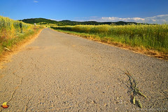 Fields & Hills - Moravia - Czech Republic (DTB_3037) (masinka) Tags: dirt fields rolling hills czechrepublic czechia moravia morava europe european evropa exploring