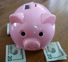 Piggy bank with dollar bills (Senior Guidance) Tags: pink piggy bank dollar bills twenty dollars retirement ira 401k saving savings piggybank piggybankwithdollarbills piggybankcloseup piggybankupclose retirementsavings