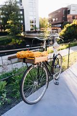 Bike (borishots) Tags: sony sonya7 sonyfe28mmf2 28mm f2 wideangle wide oslo norway scandinavia nydalen light natural naturallight sun sunlight sunset sunshine bicycle ride drive fence bokeh bokehlicious bokehwhore