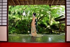 Maiko_20170528_22_8 (kyoto flower) Tags: eishoin temple tomitsuyu kyoto maiko 20170528 舞妓 栄摂院 富津兪 京都 tugumiyoshikawa