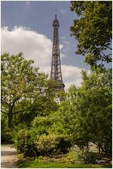 PARIS_La tour Eiffel (regis.muno) Tags: nikond7000 paris iledefrance monument france photo photographie exterieur latoureiffel champdemars