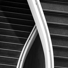 crossing (Blende1.8) Tags: stair stairs staircase stairway stufe stufen treppenstufen handlauf banister line lines black white mono monochrome monochrom minimal minimalism minimalismus architecture architektur interior carstenheyer treppe treppenhaus bw sw leica dlux 109