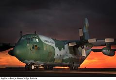 C-130 Hércules (Força Aérea Brasileira - Página Oficial) Tags: aeronave aeronavemilitar brazilianairforce c130 c130hercules fab forcaaereabrasileira forçaaéreabrasileira fotobrunobatista hercules lockheedc130hhercules transporte aviao bimotor militar brasilia df brazil bra